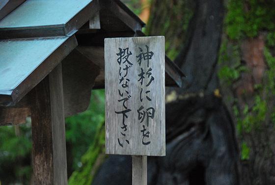 Miwa_08