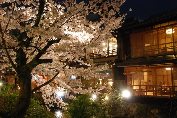 Gion_shirakawa04