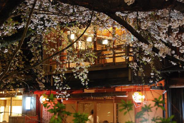 Gion_shirakawa05