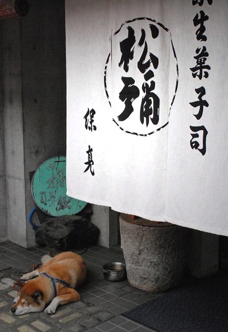 Matsuya1_4