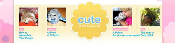 Cuteoverload_1