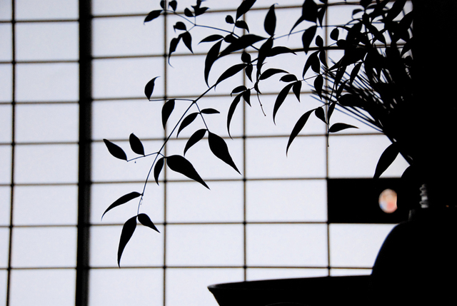Miyama_07