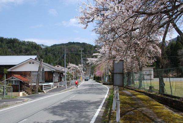Joushoukouji_0