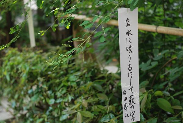 Akimatsuri_6