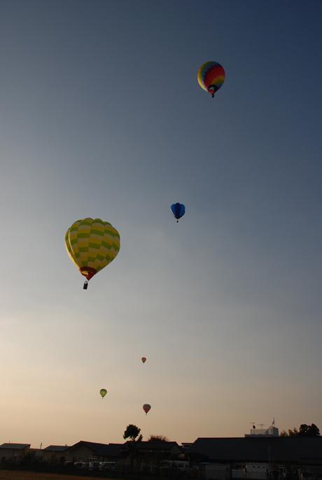 Balloon_16