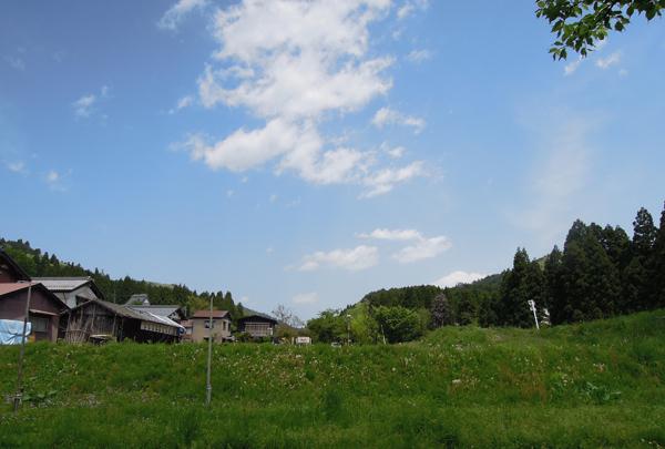 Farm5_2_14
