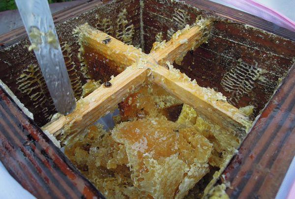 Honeyharvest_10